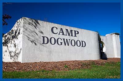 campdogwood